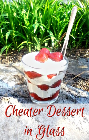 Cheater Dessert in Glass - Anna Can Do It!