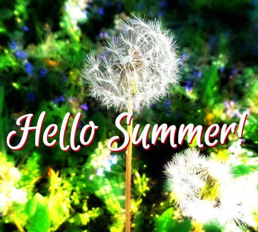Hello Summer - Anna Can Do It!