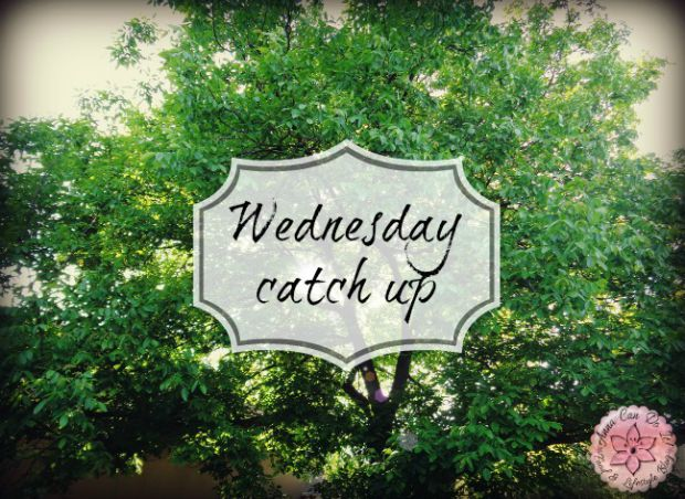 Wednesday catch up - Anna Can Do It!
